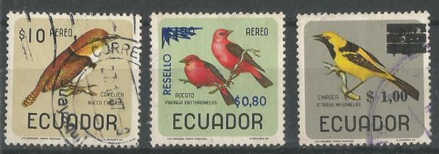 ECUADOR BIRDS 5