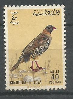 LIBYA BIRDS 1