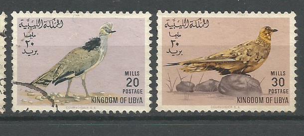 LIBYA BIRDS 2