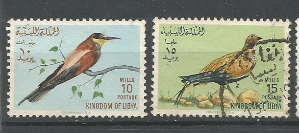 LIBYA BIRDS 3