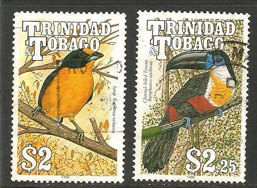 TRINIDAD BIRDS 3