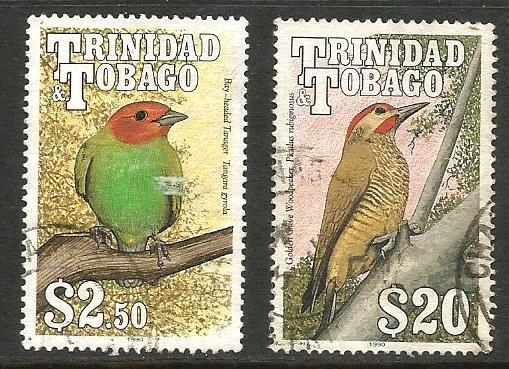TRINIDAD BIRDS 4