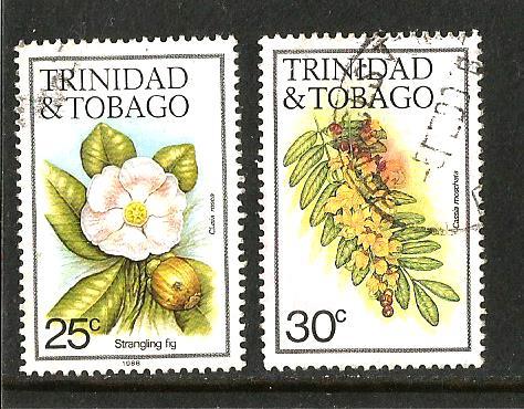 TRINIDAD FLOWERS 3