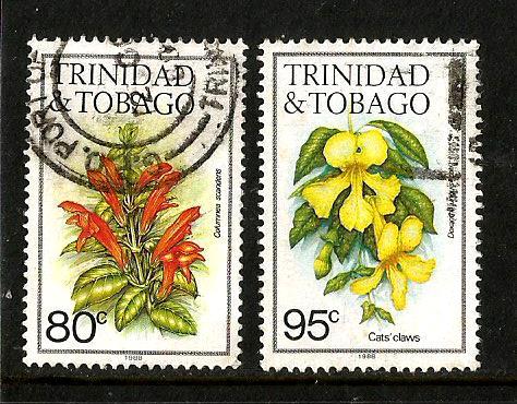 TRINIDAD FLOWERS 5
