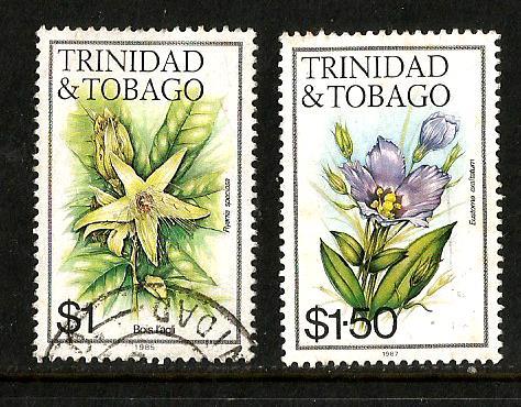 TRINIDAD FLOWERS 6