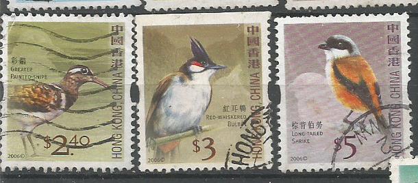 HONG KONG BIRDS 4