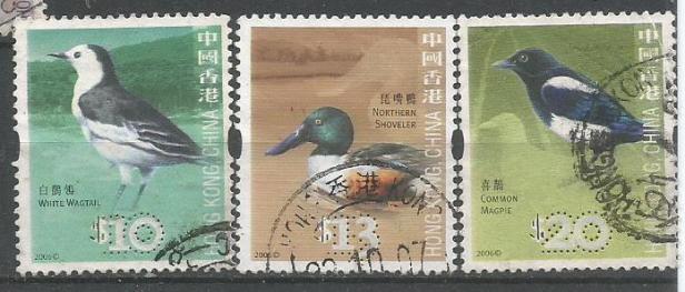 HONG KONG BIRDS 5