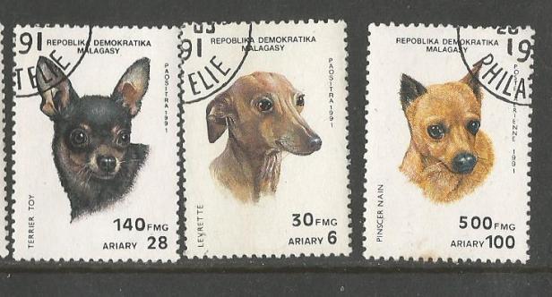 MADAGASCAR DOGS 2
