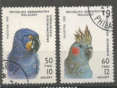 MADAGASCAR PARROTS 1