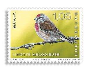 LUXEMBOURG EUROPA 19 Birds 2