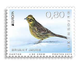 LUXEMBOURG EUROPA 2019 - Birds