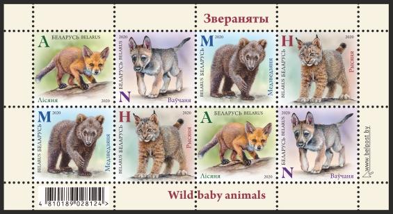 Belarus Wild Baby Animals
