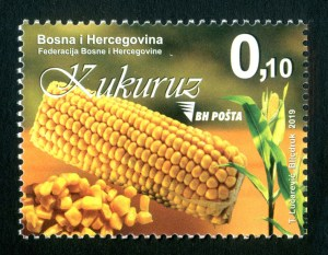 Bosnia Corn