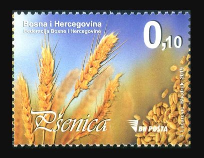 BOSNIA HERZEGOVINA 2019- FOOD CEREALS