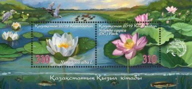 Kazakh Water-Flowers