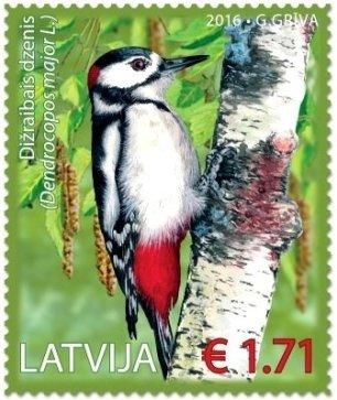 Latvia Woodpecker