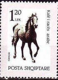 ALBANIA 1992- HORSES
