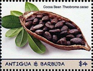 Antigua Cocoa
