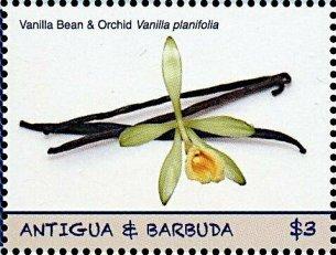 Antigua Vanilla