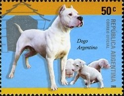 ARGENTINA 2006 -DOGS