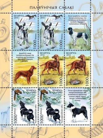 Belarus Dogs