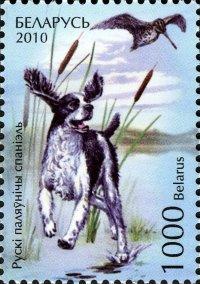 BELARUS 2010- DOGS