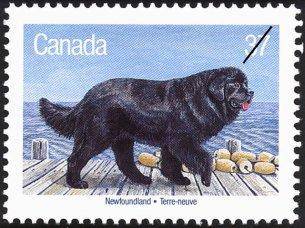 Canada Newfound
