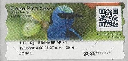 Costa Rica ATM Bird