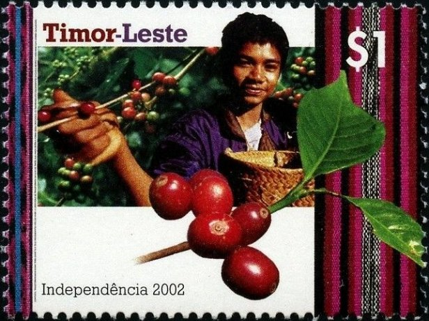 East Timor Coffee