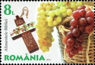 ROMANIA 2016- GRAPES AND OLIVE