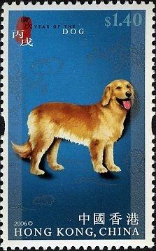HONG KONG CHINA - DOGS