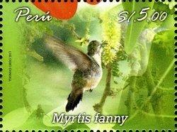 Peru hbird2