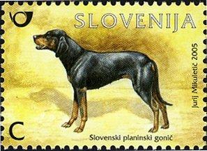 SLOVENIA 2019 -DOGS