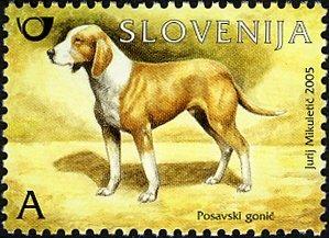SLOVAKIA 2005-HOUNDS