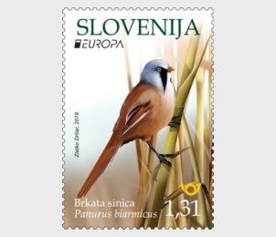 Slovenia Reedind