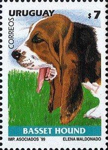 Uruguay 1999 Basset