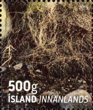 Iceland Soil2